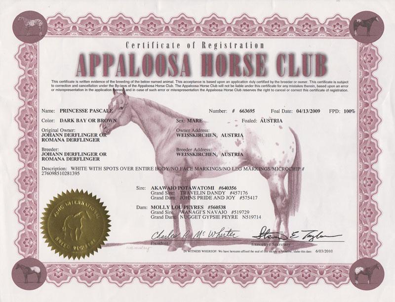 Princesse-Pascale-Registration-Certificate