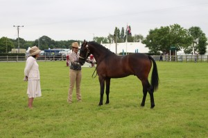 ROYAL 3 COUNTIES SHOW 2