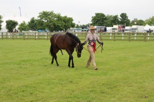ROYAL 3 COUNTIES SHOW 3