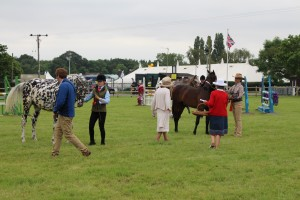 ROYAL 3 COUNTIES SHOW 4