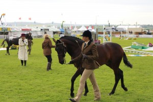 ROYAL CORNWALL SHOW (2)